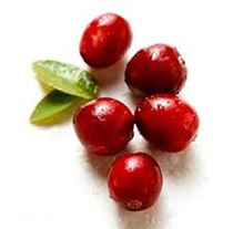 cranberry_tummy flattening foods
