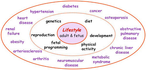 Lifestyle diseases in india