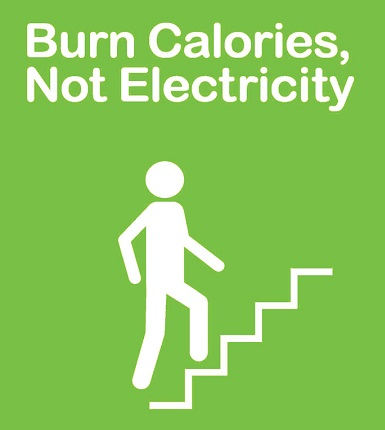 burn calories lose weight