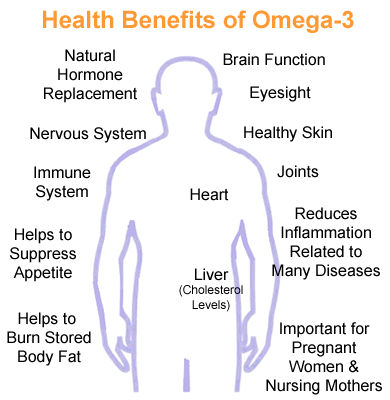 omega 3 importance weight loss