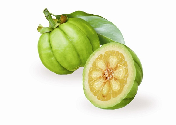 Garcinia Cambogia Extract for weight loss – does it work 1