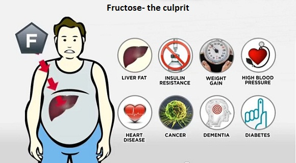 Fructose-health problems