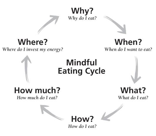 mindful eating cycle for weightloss