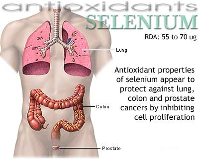 selenium for health
