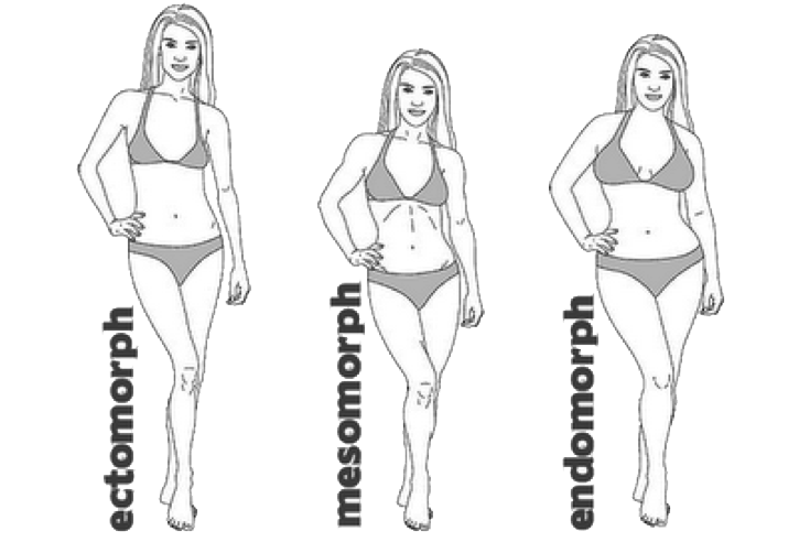 Workouts For Your Body Type-What Is Your Body Type ...