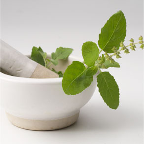 tulsi health benefits