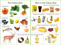 Paleo - The Cave Men Diet yes no list