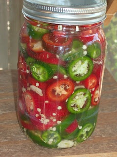 fermented pickles in venegar