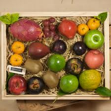 diwali gifts exotic fruits
