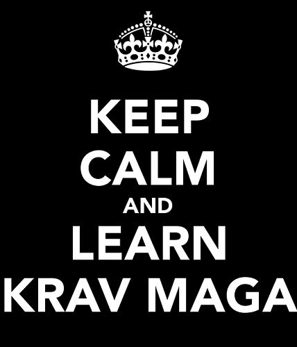 Krav Maga for fitness and self defence
