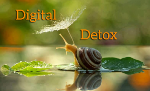 kosher diet Digital-Detox