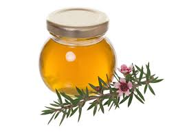 tea tree oil for bad breath