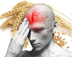 wheat addiction affects brain