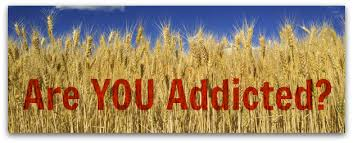 wheat addiction