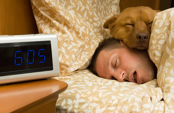 winter allergies and ways to prevent them-man sleeping with dog