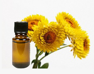 Top 7 benefits of Helichrysum essential Oil