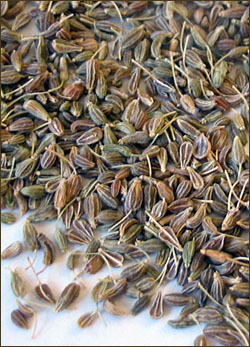 Top 9 Health Benefits Of Anise Oil - Indian Weight Loss Blog