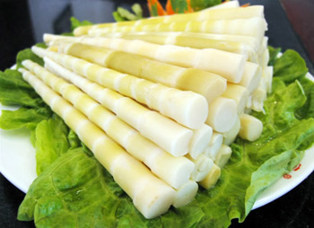 Top Health Benefits Of Bamboo Shoots 1