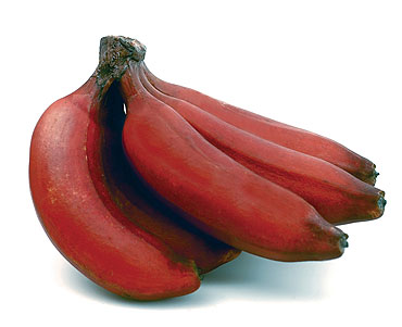 red-banana Nutrition facts and health benefits of red banana