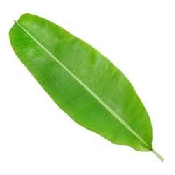 How eating food on banana leaf is beneficial