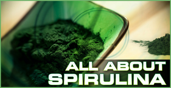 Spirulina the superfood