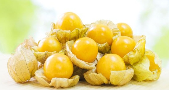 Golden Berries benefits
