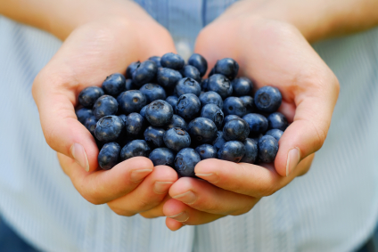 bilberry health benefits 2