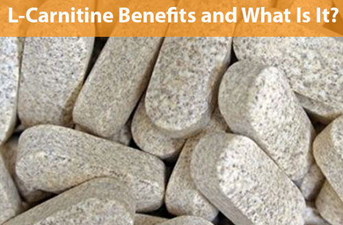 cartinine supplement