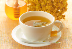 goldenrod tea health benefits