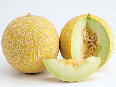 Galia melon health benefits