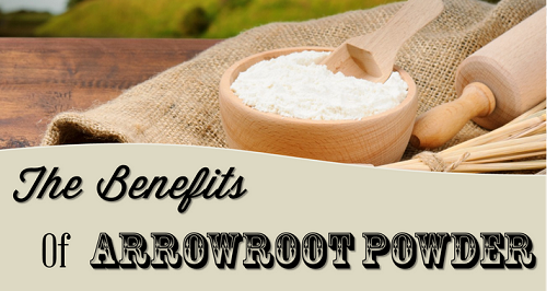 Arrowroot powder benefits