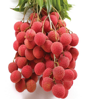 Litchi-Nutrition facts and benefits2