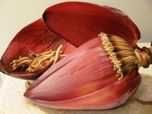banana flower health benefits, Health Benefits Of Banana Flower