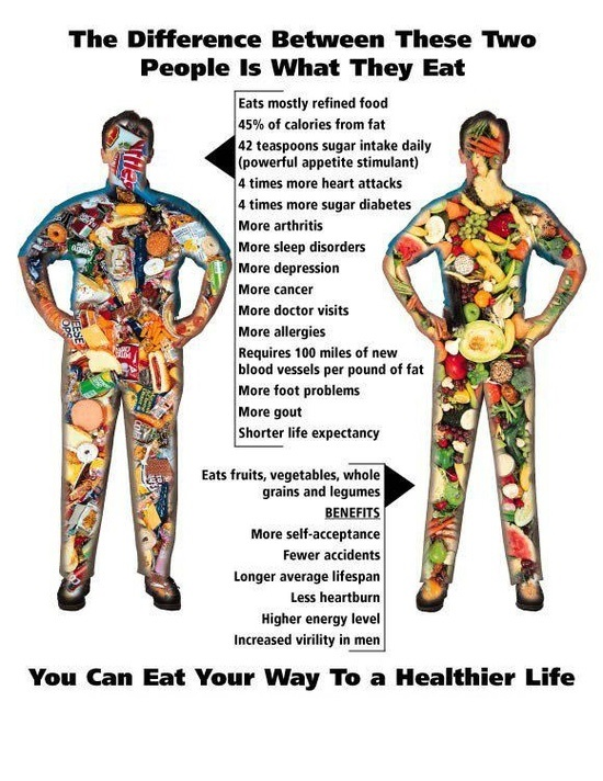 med-diet-plans, Which Diet works better for you