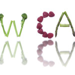 Fruits, vegetables and seeds spelling the word low carb