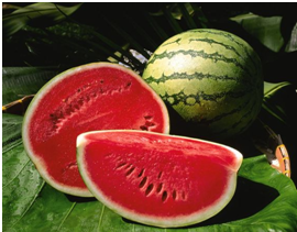 watermelon_tummy flattening foods