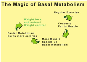 How BMR Affects Weight