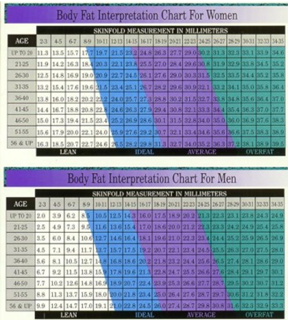How To Track Weight Loss Progress fat measurement