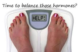 Hormones and weight loss scale