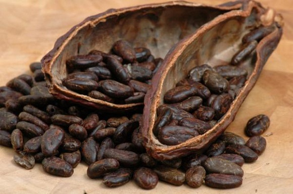cocoa beans health benefits