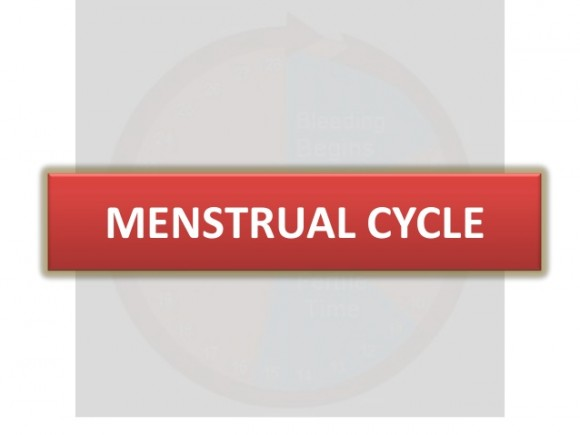 scanty periods menstrual cycle