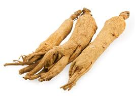ginseng food taht fights fatigue