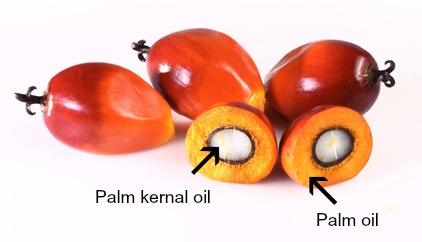 Is Palm Oil In Food Bad For Your Health