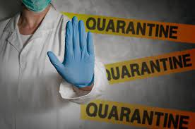 Self Quarantine Tips What WHO Suggests